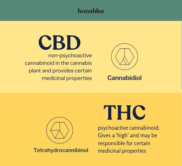 CBD & THC basics