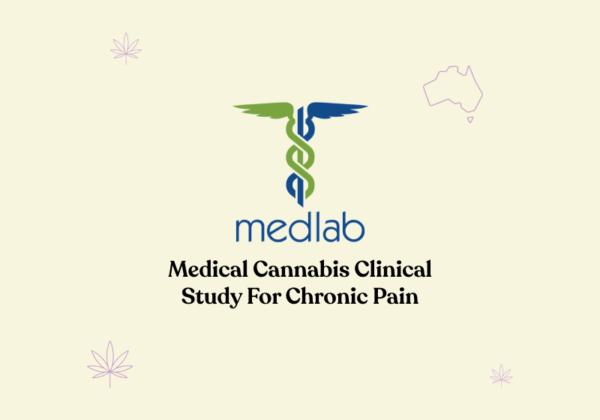 medical cannabis clinical study chronic pain feature